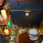 Nautilus submarine sous marin disneyland paris toilets wc toilettes3