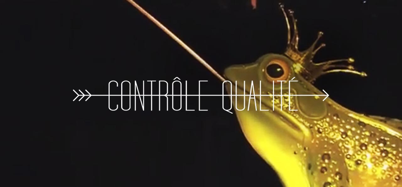 http://www.leparcorama.com/2012/06/10/controle-qualite-aquanura-at-efteling/