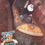 Splash Mountain on ride picture2