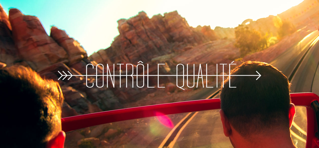 CONTROLE QUALITE : Disney California Adventure
