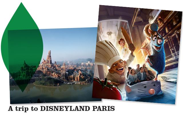 disneyland-paris-2014-raratouille-attraction-aventure-totelement-toquée-de-remy